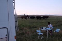 Cowboy-in-Kasachstan-8