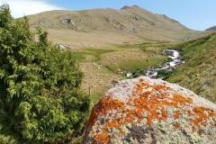 Fahrt-in-das-Naturschutzgebiet-in-Kaskacy-30