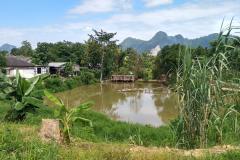 Das-goldene-Dreieck_Laos-12