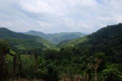 Das-goldene-Dreieck_Laos-16