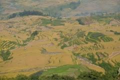 Hani-Yunnan-7