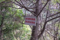 Lanzhou-Tianshui-Maiji-27