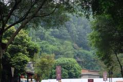 Groesste-Buddha-Statue-der-Welt-30
