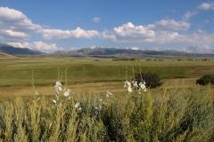 Naturreservat Aksu-Jabagly-14