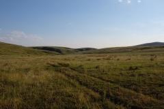 Naturreservat Aksu-Jabagly-18
