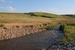 Naturreservat Aksu-Jabagly-22