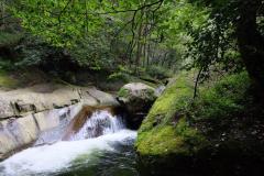 Naturschutzgebiet-Tangjiahe-12