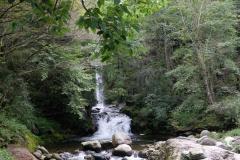 Naturschutzgebiet-Tangjiahe-14