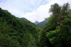 Naturschutzgebiet-Tangjiahe-15
