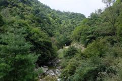 Naturschutzgebiet-Tangjiahe-20