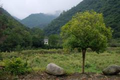 Naturschutzgebiet-Tangjiahe-3