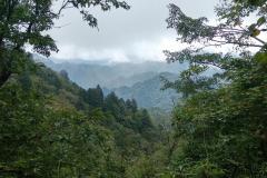 Naturschutzgebiet-Tangjiahe-35