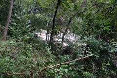 Naturschutzgebiet-Tangjiahe-4