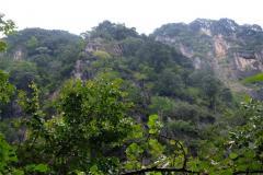 Naturschutzgebiet-Tangjiahe-5
