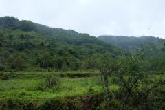 Naturschutzgebiet-Tangjiahe-6