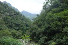 Naturschutzgebiet-Tangjiahe-7