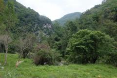 Naturschutzgebiet-Tangjiahe-9