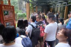 Chengdu-12
