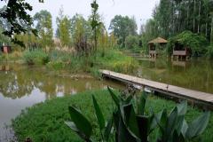 Chengdu-29