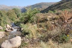 Rückfahrt-ins-kirgisische-Bishkek-12