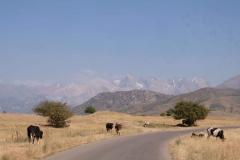 Rückfahrt-ins-kirgisische-Bishkek-2