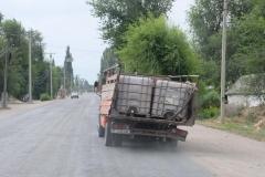Auf-den-Strassen-von-Bishkek-4