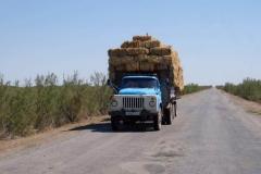 Auf den Straßen in Usbekistan