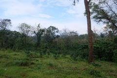 Tad-Fane-Wasserfaelle-in-Laos-16