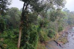 Tad-Fane-Wasserfaelle-in-Laos-20