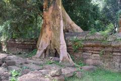 Angkor-Wat-26