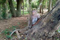 Angkor-Wat-27