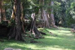 Angkor-Wat-30