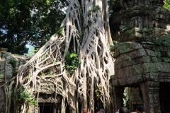 Angkor-Wat-31