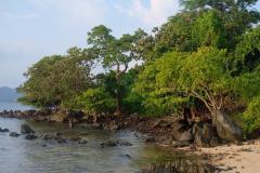 Trauminsel-in-Kambodscha-11