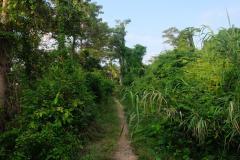 Trauminsel-in-Kambodscha-6