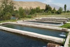 Toktogul-Karaköl-1