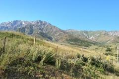 Wandern-im-Naturreservat-Aksu-Jabagly-14