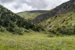 Wandern-im-Naturreservat-Aksu-Jabagly-16