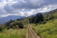 Wandern-im-Naturreservat-Aksu-Jabagly-6
