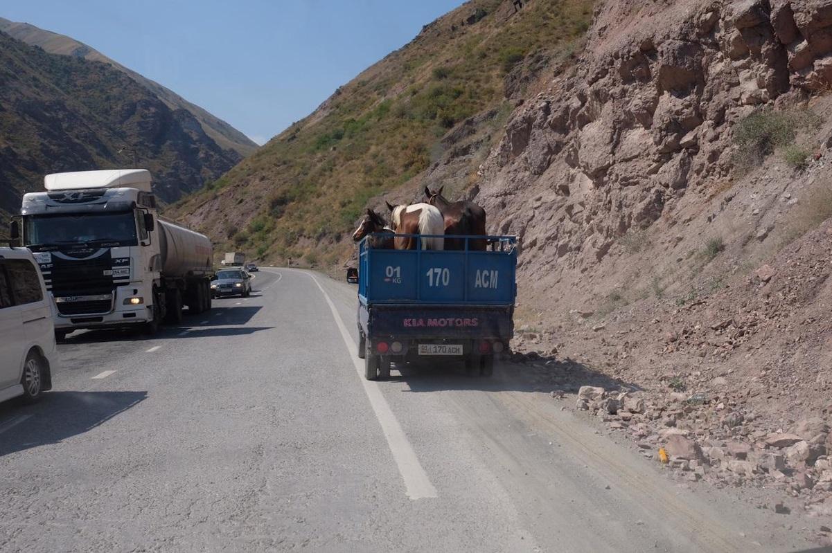 Durch das wilde Kirgistan
