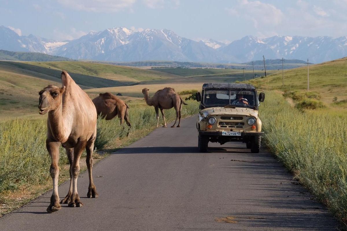 Naturreservat Aksu-Jabagly