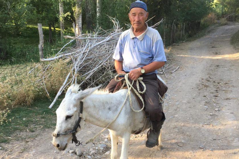 Rückfahrt ins kirgisische Bishkek